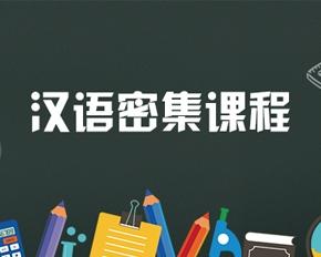汉语密集课